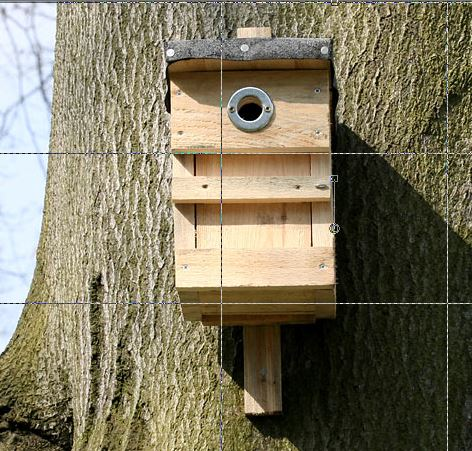 Ferienaktion Vogelkästen bauen